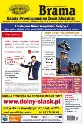 okładka 43/2011